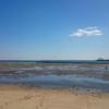 高松干潟 潮干狩り 2016年下見