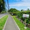 ハワイに恋して2 #9  カイルアタウンをレンタサイクルで巡ろう!