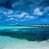 ダイバー憧れの地! トム・クルーズが潜った海のあるイギリス領ケイマン諸島