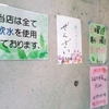 CAFE「森のたね」の「名無し弁当(人参しりしり・生姜焼他)」 400円