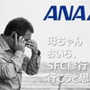 ANAの諸々の期間限定、セールがいくら以下ならメリットがある?をまずは海外でまとめてみた【ANA SFC修行 2017年度版】