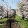 SSK (SunnySide of Kyoto)(+733/1098)