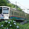 今日(6/30)・明日(7/1)の近江鉄道