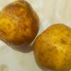 家飯 僕ピッツァって言いました バージョン馬鈴薯