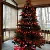 大好きな夫実家のクリスマスツリーデコレーション