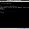 Ubuntu16.04のVirtualBoxで徳丸本サンプル動かしてみた
