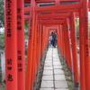 【谷根千】谷中霊園~谷中銀座~根津神社へぬける③根津神社。東京にも千本鳥居があります。