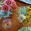 生花の曼荼羅