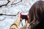 【カメラ初心者必見】ミラーレスと普通の一眼レフカメラの違いは?