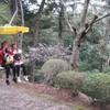 勝俣部長の「高尾登山と健康体質作り」567・・・・賢い生き方