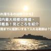 【崩れ落ちるのは明日かも】国内最大規模の廃墟・軍艦島!おすすめの理由【上陸までに船酔いする?入れる範囲は?】