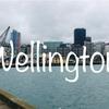 洗練されたクールなニュージーランドの首都、ウエリントンの見どころ!