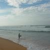 ヒッカドゥワ、スリランカのビーチで、サメを食べる。