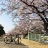 ライド記録(2019/04/07)桜