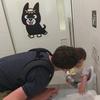 9ヶ月の娘と日本家族旅行 別府 海地獄