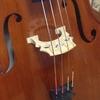 ヤマハ大人の音楽教室でチェロを習う