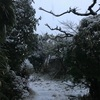 雪の庭しんしんしんしん暮れてゆく(あ)