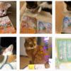 皆様と猫様たちのおかげで、「ちびねこ亭の思い出ごはん」の続編を書くことができます。2021/01/10までのInstagram投稿分