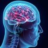 「知的な人」とは? 学歴やIQとは違う 知的な人の10の特徴