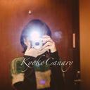 カナリヤ響子ブログ