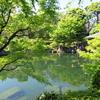 都内で癒される場所|目白庭園がおすすめ|SX720HSを持ってお散歩