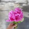 花束と俳句会