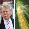 トランプか?ヒラリーか?米大統領選と株価や為替の暴落リスク