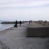 新湊漁港 東堤防で サワラとキジハタゲット!はじめての2目釣りww