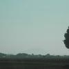 筑波山を久々に見ることができた。