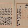 すっとこ日本国憲法