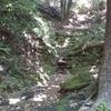 旅2日目  鎌倉アルプス➕鎌倉見物