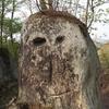 ニョッキニョキきのこ岩 in 和製カッパドキア ~浄土松公園・きのこ岩~