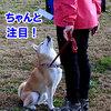 JKC ST連合会東日本 1
