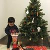グローバルトレードのツリーと1歳児