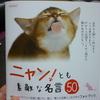 ダイソーに売ってある名言の本を買って見た!100円とは思えない完成度なのでびっくりしたのだ!
