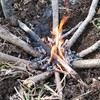 火熾しの基本【焚き火の型】