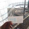 『新海誠展「ほしのこえ」から「君の名は。」まで』を観に国立新美術館へ行ってきました