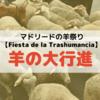 【Fiesta de la Trashumancia】10月の羊の大行進!!マドリード中心街で遊牧に行ってきた