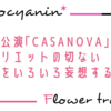 アンリエットの切ない表情が見せる恋心が気になる「CASANOVA」感想9