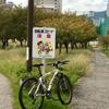 季節外れの桜ではない十月桜の開花