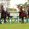 2019年宝塚記念 出走唯一の牝馬リスグラシューがV!G1・2勝目 |東京競馬場の大型スクリーンでレースを見ていた2017年秋華賞