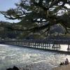 早春・渡月橋から至近距離 プチ歴史散歩