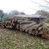 薪の原木6トン到着!