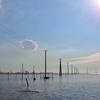 木更津の江川海岸で、海へと続く電柱を見てきた!