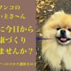 今日からできる健康づくりのポイント|犬の飼い主さんのためのコロナ講座2