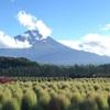 富士山登頂における夫からの教え