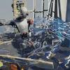 Unity: URPのモザイクシェーダーと水面シェーダー