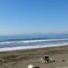 【海】3週間ぶりの海は板も自分もかすり傷【ただの日記】