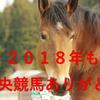 【2018 中央競馬最終日 競馬結果回顧】今年もありがとう(^_-)-☆