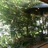 木のぬくもりが落ち着くカフェと新しい風